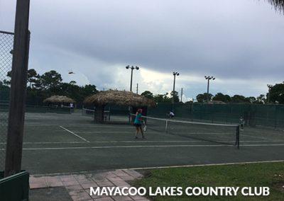 mayacoo2_srcset-large